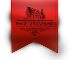 http://www.nadstawami.pl/sites/default/files/logo5.png